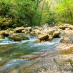 Туристический маршрут рядом с Агурскими водопадами. Хоста.